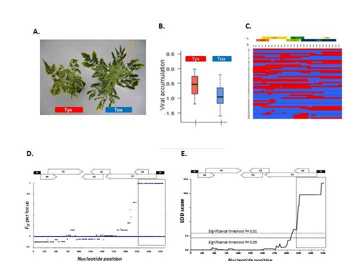 figure Virology highlight QTL-V2